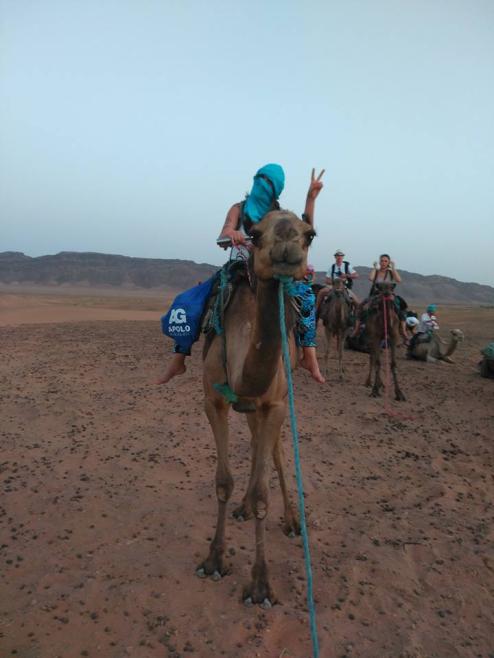 mas camello